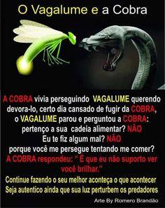 jrr.inversus.blogspot.com: O VAGALUME E A COBRA