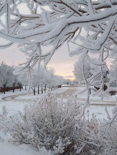 Awake to a winter wonderland on Christmas morn