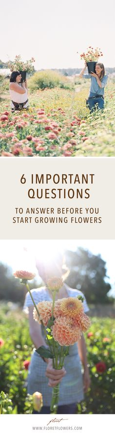 Before you plant your first cut flower garden seeds, be sure to answer these six key questions first.  Garden, gardening, flower, cut flower garden, cutting garden, seasonal flowers, blooms, home gardening, flower farm, small farm, farmer-florist, floral design, seasonal, local, seed, farming, microfarming   #flowers #growfloret #flowers #gardening #garden #farming