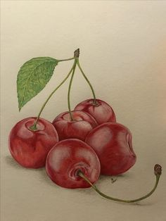 🍒, #fabercastell#prismacolor#coloredpencil#my drawings