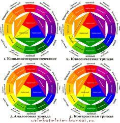 Цветовой круг Иттена. Шпаргалка цветосочетаний | Увлекательные Бонсай