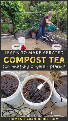Learn how to make aerated compost tea - a powerful but mild organic fertilizer to feed your plants! We'll explore its benefits, supplies needed, the easy step-by-step process of how to make it (video included), and ways to use compost tea in the garden. #compost #composttea #organicgardening #gardentips #garden Compost Tea, Organic Compost, Organic Fertilizer, Garden Compost, Organic Gardening Catalogue, Organic Gardening Tips, Indoor Gardening, Sustainable Gardening, Indoor Herbs