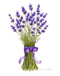 lavender art - Szukaj w Google
