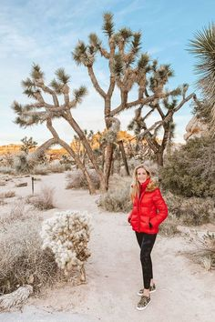 Everything you need to know to plan the perfect Joshua Tree weekend getaway including activities, lodging, food and more. Fashion For Women Over 40, Holiday Looks, Nyc Fashion, City Style, Weekend Getaways, Vacation Spots, Travel Pictures, Adventure Travel, Travel Inspiration