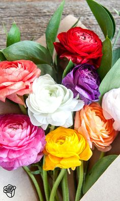 Send a loved one a nice surprise with 'Cake n' Cream', a vibrant arranagement of mixed ranunculus.
