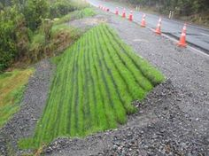 Slope Stabilization  Worldwide Rock Works has broad experience performing major and minor works for private and open elements.  #Slope #Stabilization  http://mountain-solutions.net/