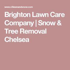Brighton Lawn Care Company | Snow & Tree Removal Chelsea