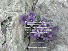Flowers, Plants, Quotes, Quotations, Florals, Plant, Qoutes, Flower, Quote