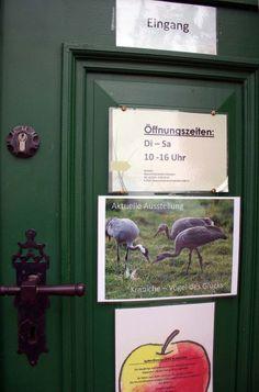 Ausstellung Faszination Kraniche in der Naturschutzstation Schwerin | Kranichausstellung des NABU in der Naturschutzstaion Schwerin (c) Frank Koebsch (3)