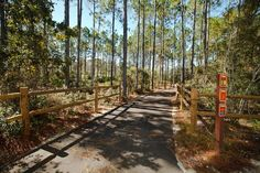 New conservation park in Panama City Beach. 11 miles of trails! Enjoy the outdoors.