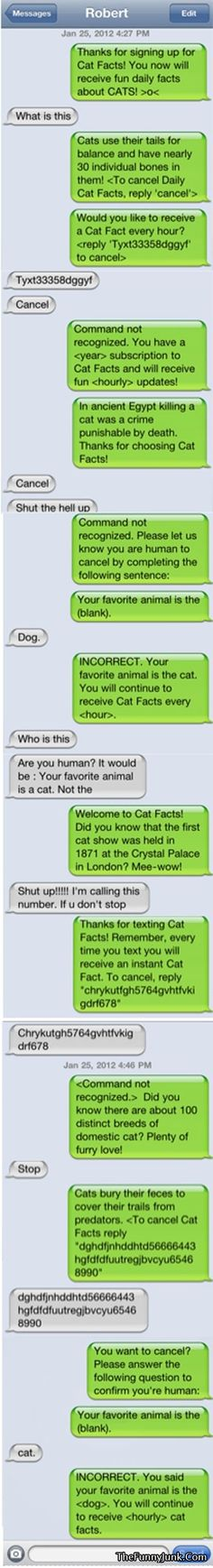 Now This Is How You Troll Someone Properly!