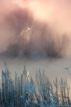 41 Best ideas for winter photography nature backgrounds mists Winter Photography, Nature Photography, Sunrise Photography, Levitation Photography, Exposure Photography, Abstract Photography, Wedding Photography, Misty Day, Winter Scenes