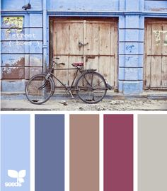 Love these colors...