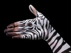 Zebra - Ricerca personale - 2008
