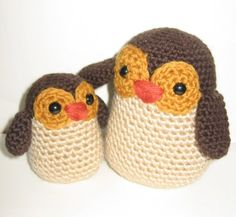 Ana Paulo Rimoli owls