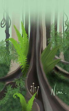 QLD Australia  Rain Forest