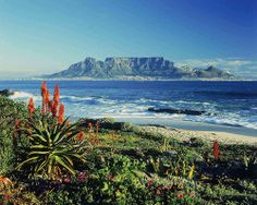 A travel guide to Table Mountain, Cape Town. Find out about Table Mountain and Table Mountian Cableway Cape Town.
