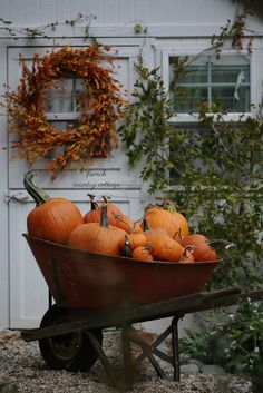 Happy Fall Y'all  Wheelbarrow full of pumpkins galore