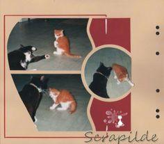 Scrap et plus... par Cécile  Loisirs créatifs ; Scrapbooking ;