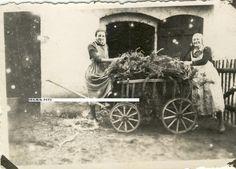 Foto Frauen mit Handwagen,Landwirtschaft,schwere Arbeit | eBay