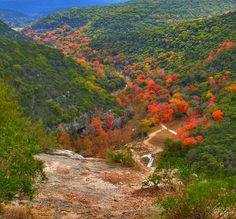 Lost Maples State Park Scenic Overlook, Vanderpool, Texas