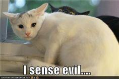 I senseevil….
