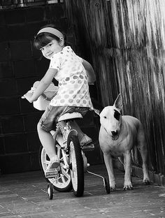 English Bull Terrier with a little girl, vintage photograph.