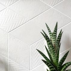 Rhombus white textured tile suitable for walls and floors. Available in a range of colours, contact info@structuralskins.co.uk to enquire.