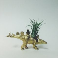 Gold Stegosaurus Dino Planter with Air Plant