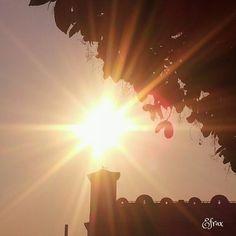 Hermoso atardecer! :) En la cuna del Sol! Y ese pájaro pasando sobre la torre del Cartelón! :D