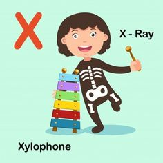 Illustration Isolated Alphabet Letter X-x Ray Xylophone Animal Alphabet, Alphabet Letters, Flashcards For Toddlers, Realistic Sketch, Quiet Book Patterns, Word Pictures, Letter Sounds, Infant Activities, Phonics