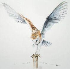 Image result for flying/barn/owl/tattoo