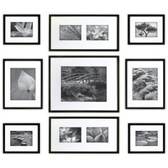 9 Piece Wood Picture Frame Set