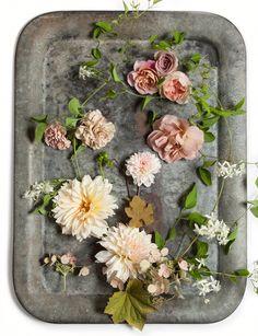 #BHLDN #Autumn #Bloomers on the #AnthroBlog