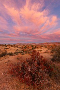Sunset in the Desert @ www.photographybyvarina.com/galleries/deserts