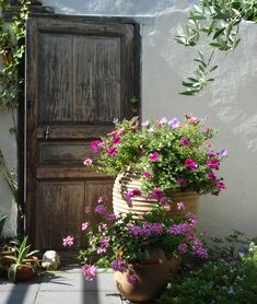 aanleg Griekse tuin in mediterrane sferen