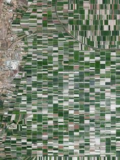 4/13/2016 Plain of Fucino Abruzzo, Italy 42.0043709, 13.5290608 The plain of Fucino in the Abruzzo region of Italy is commonly recognized for the quality of the vegetables that are grown here - in particular the potatoes, carrots, and radishes. What is now an entire plain filled with farms was once Fucine Lake, the third largest lake in Italy. The lake was drained in 1877 to make agricultural development possible here, an area that is now responsible for roughly 25% of the agricultural p...