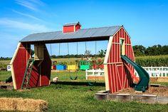 Backyard Playground, Backyard For Kids, Pumpkin Patch Photography, Pumpkin Patch Farm, Photography Set Up, Kids Play Area, Outdoor Classroom, Outdoor Projects, Outdoor Fun