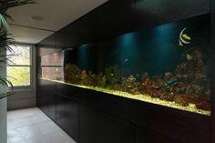 aquarium encastrable géant pour dissimuler le mur de rangement