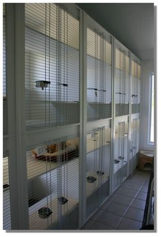 Dog Boarding Kennel lobby | ... spacious and sparkling clean boarding areas small dog boarding area