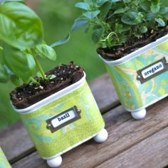 Good gift idea The lowly spam can gets a whole new image as a cute herb garden!Double Green-reuse Spam can ande grow your own herbs Diy Projects To Try, Craft Projects, Fair Projects, Craft Ideas, Container Gardening, Gardening Tips, Spam Can, Garden Crafts, Outdoor Gardens