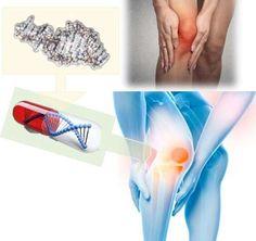 Osteoartrit eklem sorunları için olası yeni bir tedavi Medical, Medicine, Med School, Active Ingredient