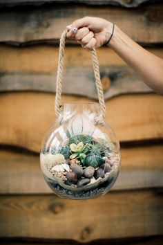 Desert Terrariums With Terrain | Free People Blog #freepeople