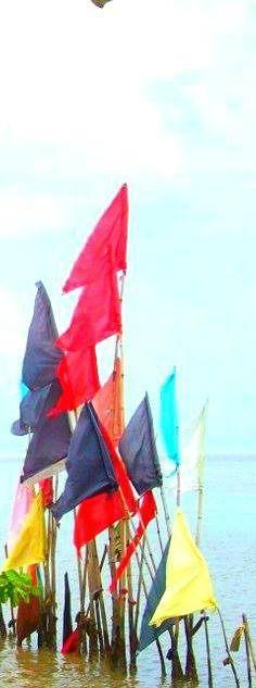 #caribbean #caribbeanlifestyle #trinidad #mayaro #hindu #worshipflags