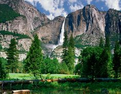 yosemite national park | Yosemite National Park, An Adventurers Place - Found The World