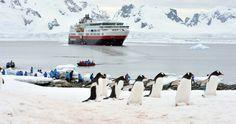 Antarktis-Expedition Südpolarkreis mit MS Fram: Das Erreichen des 66. Breitengrads ist ein Privileg, das unseren Gästen auf dieser besonderen Kreuzfahrt zuteilwird. Es erwartet Sie eine Welt voller erhabener Schönheit. Entdecken Sie ein Gebiet der #Antarktis, das nur wenige Menschen zuvor gesehen haben. Weitere Details unter www.noz.de/reisen #eis #schnee #kreuzfahrt