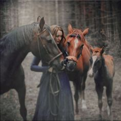 the four ❤ liked on Polyvore featuring backgrounds, horse, people, vikings and women