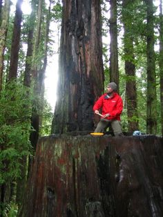 Played disc golf at The Redwood Curtain in Humboldt.
