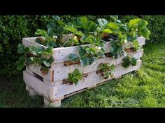 Readers use Lovely Greens DIY instructions to make their own Strawberry Pallet Planters. Here's some photos plus directions on how to make your own.