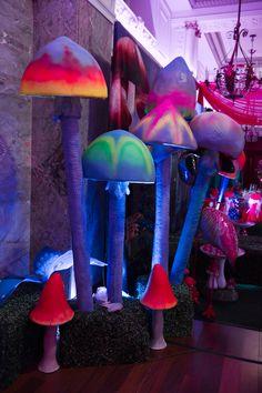 Fluorescent mushrooms and lighting!